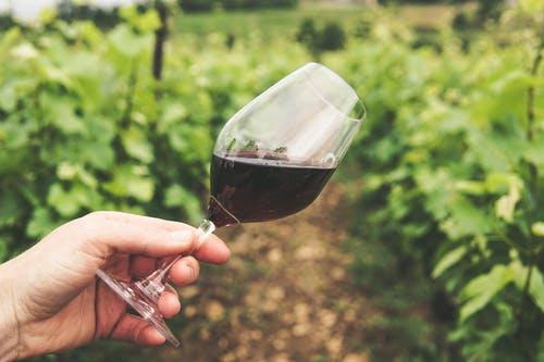 Een lekkere wijn aanbieding gezocht?